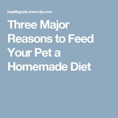 Three Major Reasons to Feed Your Pet a Homemade Diet