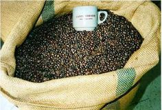 CAFES VERNIER.  Monsieur VERNIER vous propose du café sous différentes formes : en grains, moulu, extrait, café soluble et de la vanille en gousse, en poudre, extrait ou arôme. Vente toute l'année.