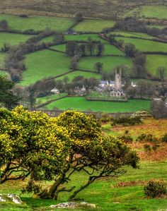 Widecombe-in-the-Moor, Dartmoor, Devon.