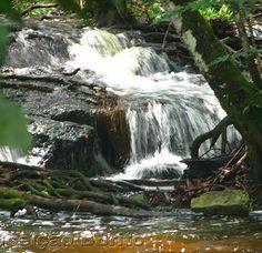 Cachoeira da Asframa Presidente Figueiredo,Amazonas,Brasil