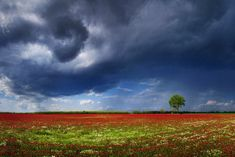 9 Best Hungarian Skies Images Nature Photography