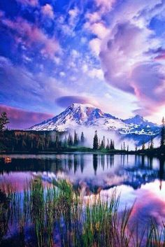 """Beautiful Places/ Rainier National Park, Washington """"In every walk with nature one receives far more than he seeks. All Nature, Amazing Nature, Pretty Pictures, Cool Photos, Amazing Photos, Inspiring Pictures, Pretty Images, Random Pictures, Parcs"""