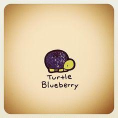 Turtle Time, Tiny Turtle, Cute Turtle Drawings, Cute Drawings, Cute Turtles, Baby Turtles, Animal Sketches, Animal Drawings, Sheldon The Tiny Dinosaur