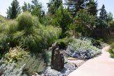 Gallery Roberta Walker Low water & very little maintenance Landscape Design, Gallery, Water, Plants, Landscapes, Gardens, Outdoor, Ideas, Gripe Water