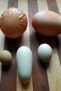 Approximately of all chicken eggs has some defect, ranging from minor, barely noticeable faults to downright alarming deformities. So the chances are.