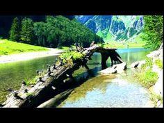 Sorinel Ghita-Stormy Love - YouTube