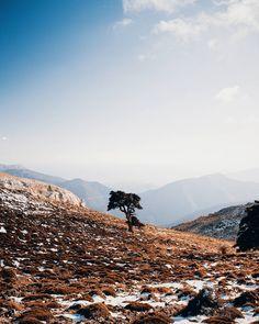 Ayer pude subir al Torrecilla (Pico más alto de la sierra de las nieves y de la provincia de Málaga 1919m) y por suerte hay algunas fotos que me han gustado como han quedado. Las iré subiendo durante esta semana. Espero que os gusten  _________________________  #artofvisuals #agameoftones #vscocam #ftwotw #quietthechaos #bleachmyfilm #engravemyphoto #featuremeval #forestfeatures #cooloceann #oceanmurmurs #chasingsouls #instagrames #tangledinfilm #cominityfirst #hallazgosemanal…