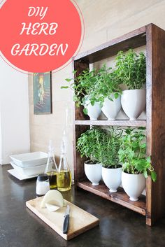 How to make a DIY herb garden using repurposed plastic bottles—and still have a classy looking design!