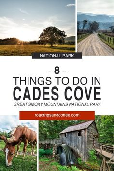 Cades Cove is perhaps the most-visited destination inside the Great Smoky Mountains National Park. The one-lane, one-way Cades Cove Loops Road travels around the cove to hiking trails, historic buildi Great Smoky Mountains, Smoky Mountains Tennessee, Smoky Mountains Hiking, Appalachian Mountains, East Tennessee, Cades Cove, Tennessee Vacation, Gatlinburg Tennessee, Gatlinburg Vacation