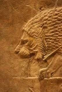 A wounded lion, Assyrian bas-relief of a royal hunt. North Palace of Nineveh, ca. 645-635 BCE.