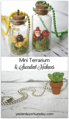 How to make Mini Terrarium and Succulent Necklaces, a fresh spring craft!