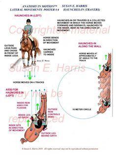 Resultado de imagen para circle of aids riding