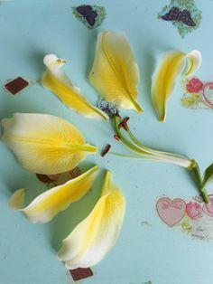 НЕУВЯДАЕМЫЙ ЦВЕТ цветы ручной работы.