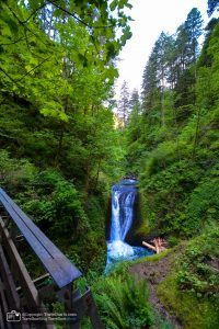 The city of Portland, Oregon, is known for its food trucks and hipster culture. The Horsetail Falls and Portland Zoo are two of the sights we went to. Portland Zoo, Horsetail Falls, Usa Cities, Best B, West Coast, Oregon, Arizona, Waterfall, United States