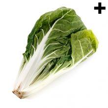 Imagen en la que se ve el plural del concepto acelga Cabbage, Vegetables, Food, Vegetables Garden, Phonological Awareness, Autism, Concept, Meal, Eten