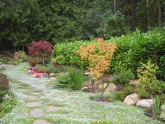 Garden ideas- that path!! Instead of grass