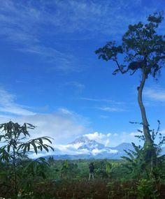 Nature Photography: Journey to Bukit 29, Lumajang, East Java, Indonesia.