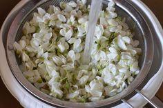 Sirop din flori de salcam - CAIETUL CU RETETE Cabbage, Grains, Vegetables, Syrup, Fine Dining, Lemonade, Recipes, Cabbages, Korn