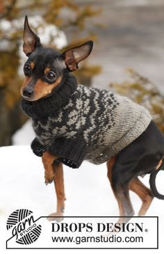 """Free Knitted DROPS dog's jumper with Norwegian pattern in """"Karisma"""". ~ DROPS Design"""