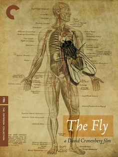 Fake Criterion: The Fly