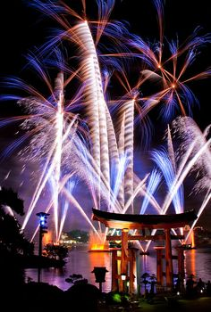 Fireworks at Epcot theme park , Walt Disney World Resort, Orlando, Florida