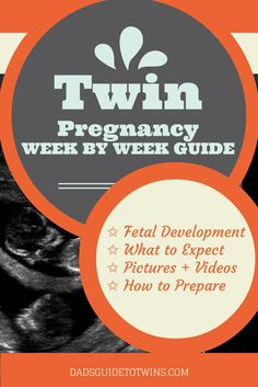 Complete Twin Pregnancy Week by Week Guide: http://www.dadsguidetotwins.com/twin-pregnancy-week-by-week/
