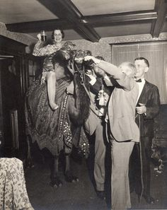 Vintage Photograph  circa 1940s Florida  Party with by theostrunk unusual vintage photograph of a group of people partying with a camel  that has been brought into the house. We believe this is some of the Tilton family,  they owned the Manalapan Islands off of the Florida Keys. Very odd picture, the   camel was brought into the house.  One lady sits with her dog on top of the camel.  The back of the photo in print  Enlargements by Eatman Kodak Stores