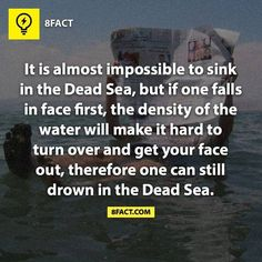 The Dead Sea is my favorite body of water, though I've never been there. And now never will.