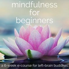 How to Start a Meditation Practice: A Guide for Beginners - Left Brain Buddha