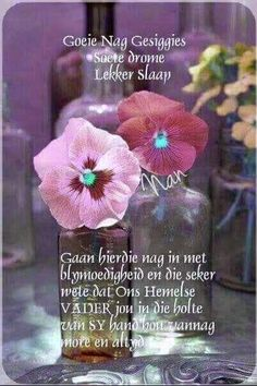 Evening Greetings, Afrikaanse Quotes, Good Night Blessings, Goeie Nag, Goeie More, Special Quotes, Messages, Words, Sleep Tight
