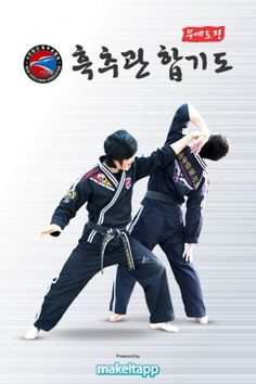 Academy Of Martial Arts, Korean Martial Arts, Martial Arts Styles, Tang Soo Do, Hapkido, Mind Body Spirit, Fight Club, Art Pictures, Boxing