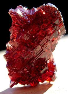 Brilliant Red Garnet #Crystals #Gemstones Minerals And Gemstones, Rocks And Minerals, Red Gemstones, Garnet Stone, Red Garnet, Garnet Jewelry, Mineral Stone, Rocks And Gems, Stones And Crystals