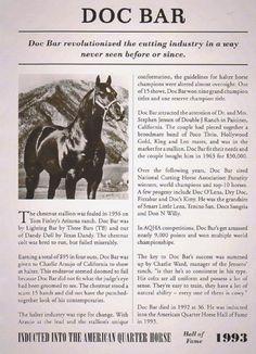 Doc Bar   stallion show record for doc bar hall of fame race