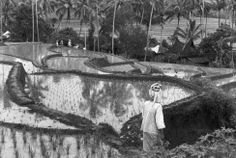 Sumatra, Indonesia 1950 Henri Cartier-Bresson