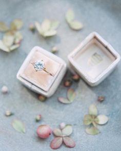 """The Prettiest of Pretties | Photography @lunademarephoto | Ring Box @the_mrs_box | Ring @susiesaltzman"""