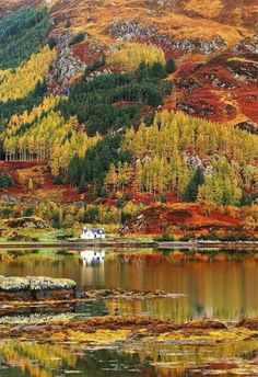 Autumn in the Highlands of Scotland. If you thought Canada was awsome. You surely don't know Scotland Places To Travel, Places To See, Scotland Mountains, Scottish Mountains, Beautiful World, Beautiful Places, Beautiful Scenery, Autumn Scenery, Scottish Highlands