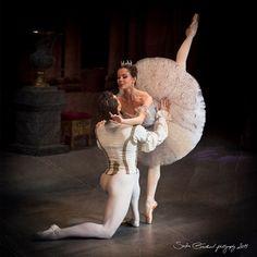 The Sleeping Beauty | Dance. Passion. Life.Maria Shirinkina and Vladimir Shklyarov