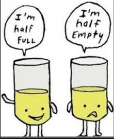 Glass Half Full or Half Empty. Identifying questions or concepts students are confident with or not