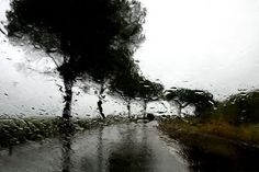 "Iranian film director Abbas Kiarostami exhibited a series of photographs titled ""Roads and Rain"" at London's Purdy Hicks gallery."