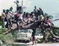 The Jackson 5 en The Wailers hangen op een omgevallen mangoboom bij 56 Hope Road met promotor Chester McCullough en een paar goede vrienden.