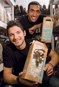 These entrepreneurs and UC Berkeley students venture into urban mushroom farming and revitalizing communities.