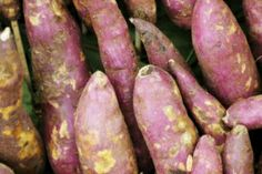 Ingrediente queridinho do verão, pepino vai bem em pratos frios e drinques - Últimas Notícias - UOL Comidas e Bebidas