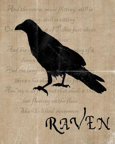 Poe's Raven by Over the Big Moon