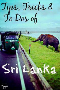 Tips, Tricks & To Do of Sri Lanka - A collaborative post written fro The Traveller's Guide by #ljojlo, http://www.hashtagljojlo.com/sri-lanka/tips-tricks-and-to-dos-of-sri-lanka