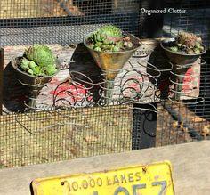 Junk Gardening with Barnwood, Springs & Funnels www.organizedclutter.net