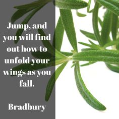 Jump you will learn how to fly on your way! Learn To Fly, Plant Leaves, Tech, Learning, Inspiration, Women, Biblical Inspiration, Women's, Study