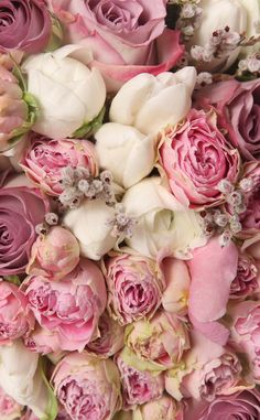 Pink Roses ★ Find more Cute Vintage wallpapers for your #iPhone + #Android…