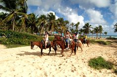 Book your adventure - Enjoy a peaceful, countryside horse ranch in northern Punta Cana where you can enjoy a fun-filled time of horseback riding away from your resort. Professional guides will assess each visitor's horseback riding experience and provide instructions about riding and controlling your horse. Your guides will accompany throughout the tour where you gallop, or stroll, along the beautiful Uvero Alto Beach