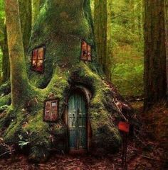 Elves Faeries Gnomes: house in the enchanted forest Beautiful Tree Houses, Cool Tree Houses, Fairy Houses, Hobbit Houses, Fairy Land, Fairy Tales, Magic Forest, Dark Forest, Forest Elf