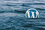 Why All New Bloggers Should Use WordPress